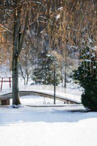Kurpark im Winter