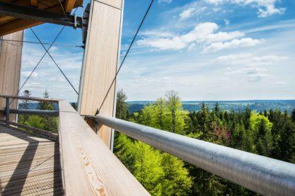Ausblick Richtung Bad Wildbad