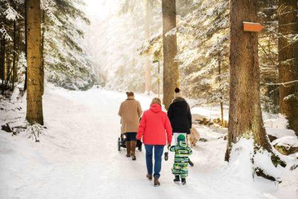 Winterwandern auf dem Sommerberg