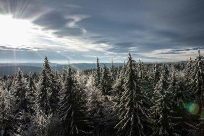 Ausblick auf den Nordschwarzwald