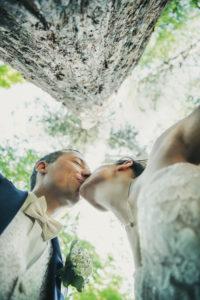 Kuss Portraitbild Baum Vonunten Braut Braeutigam